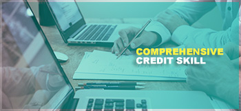 Comprehensive Credit Skill